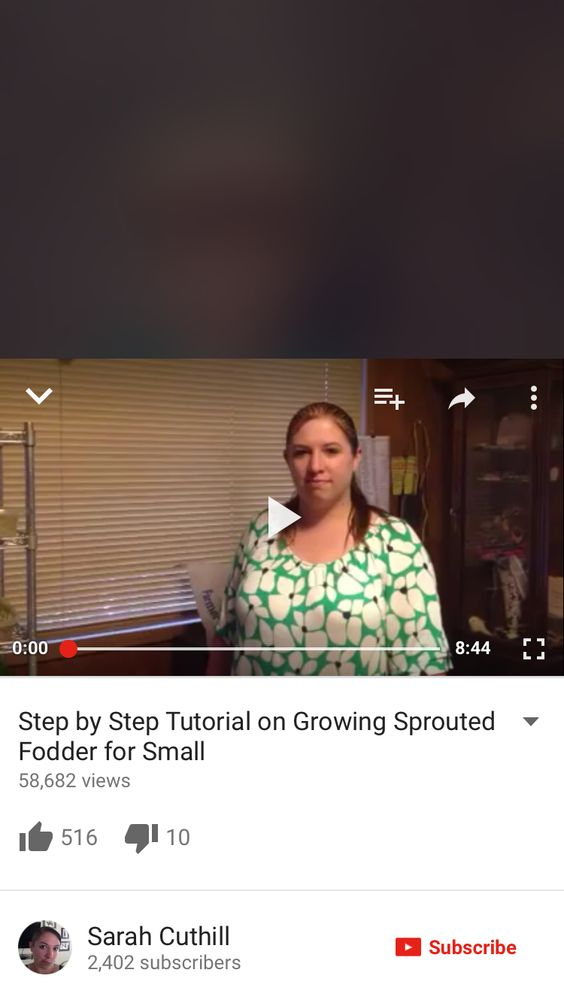 Awesome info on sprouting fodder for chickens and rabbits