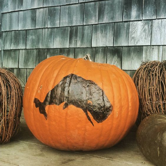 """Happy #halloween from #nantucket #wearingwhales #pumpkin #fun"""