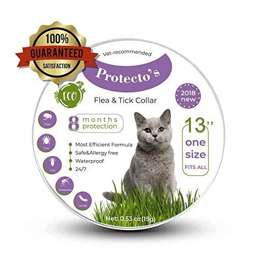 Protecto S Cat Flea Collar Tick Collar For Cats 100 Safe Hypoallergenic Kills Flea Repels Flea Natural Essential Cat Fleas Cat Flea Collar Essential Oils Cats