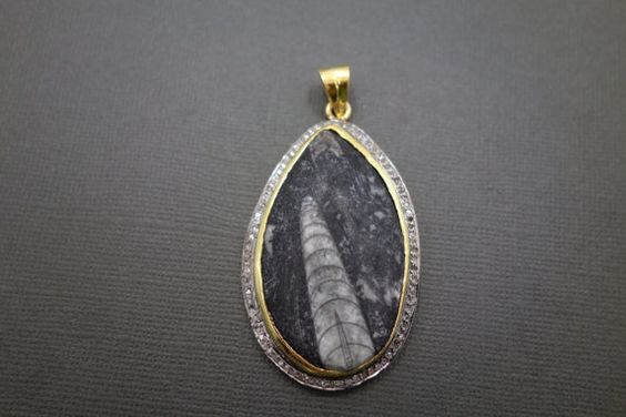 Orthoceras Fossil Pave Diamond Pendant with by jewelersparadise, $169.00