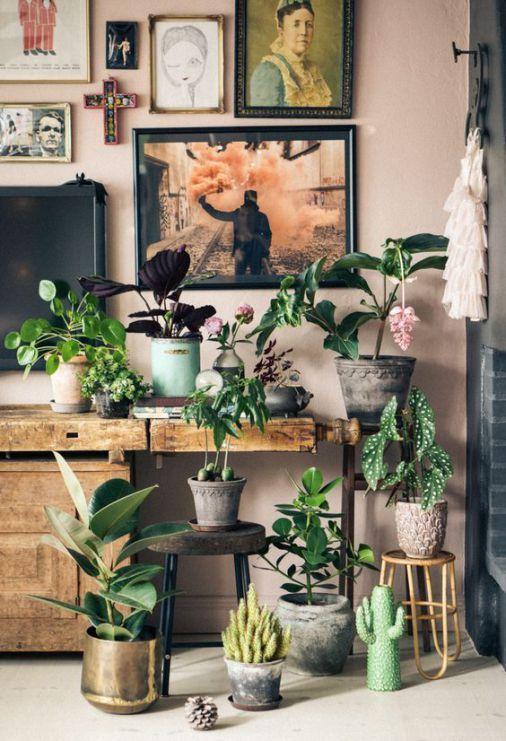 Indoor urban jungle met planten op verschillende hoogten: