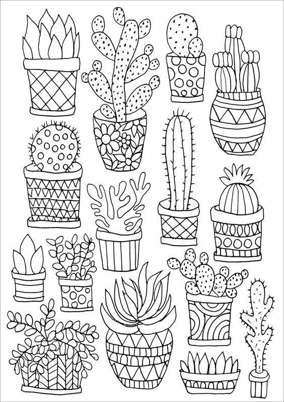 Cactus Doodles For Bullet Journals Bujo Ideas Cactus Drawing Coloring Books Coloring Pages