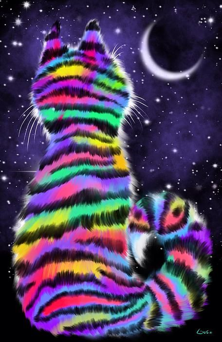 Rainbow Tiger Cat by Nick Gustafson...I just  luv tiger cats...would love to hang this in my house!