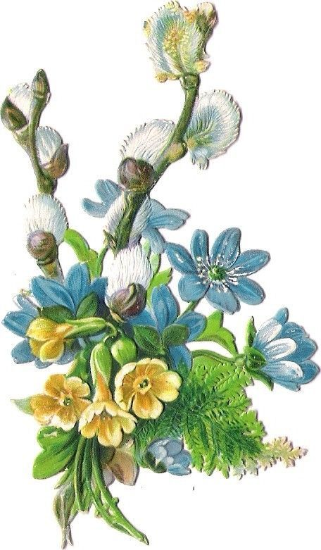 Oblaten Glanzbild scrap diecut chromo Blume  10,3 cm Flower spring Primel fern: