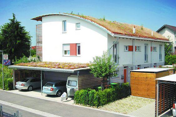 Dachbegrünung: Schön und klimafreundlich
