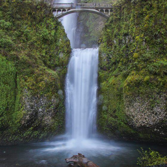 The Best Waterfalls Nearest Portland Oregon Oregon Waterfalls Oregon Falls Waterfall
