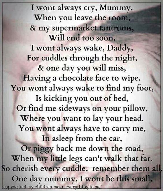 Cherish every cuddle