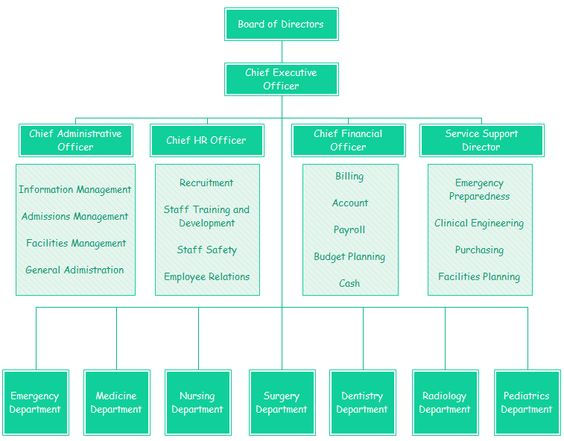 病院組織図テンプレート 組織図 Pinterest - hospital organizational chart