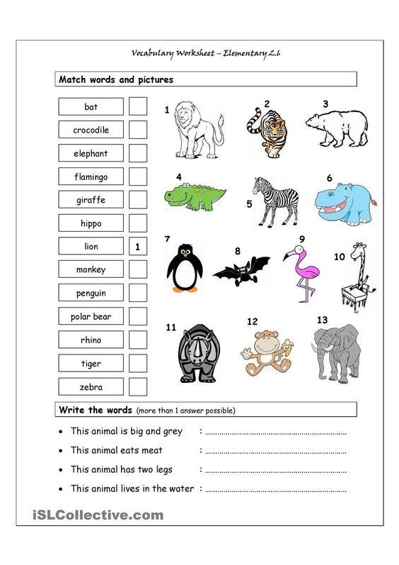 Vocabulary Matching Worksheet Elementary 26 WILD ANIMALS – Elementary Worksheets