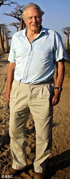 David Attenborough - national treasure