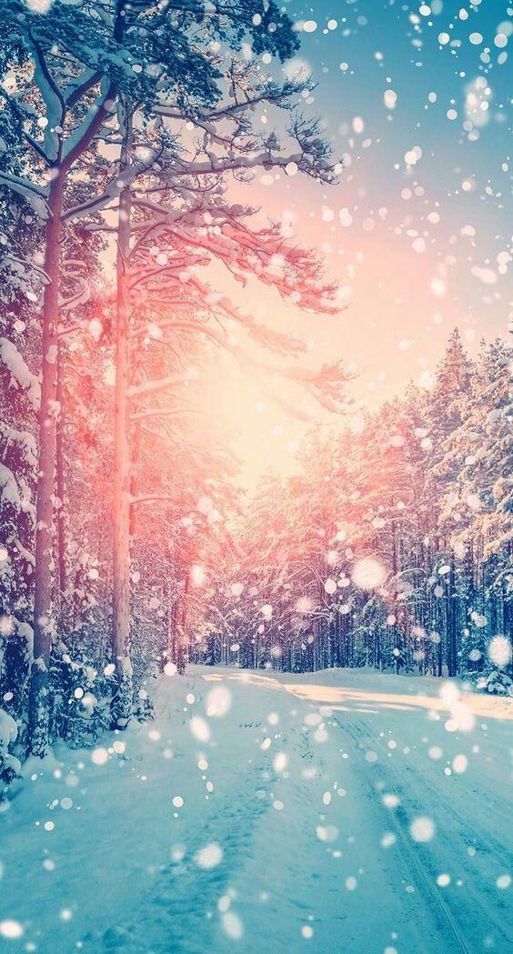 44 Winter Iphone Wallpaper Ideas Winter Backgrounds Free Download Winter Wallpaper Iphone Wallpaper Winter Beautiful Wallpapers