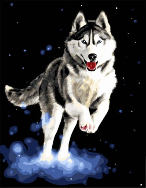 Drawjoy Wolf Framed Diy Oil Paint Diy Painting By Numbers On