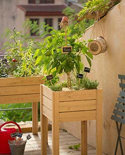 Le potager sait prendre de la hauteur. Désormais incontournable chez botanic®, le potager carré connaît des déclinaisons. Adapté au balcon citadin, ce potager sur pied peut également agrémenter vos potagers au sol. Très pratique pour son jardinage sans effort, ce concept est également très tendance !
