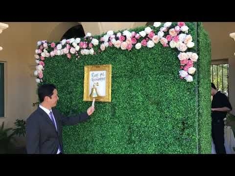 We Are Delighted To Be The Only Living Champagne Wall And Living Hedge Wall Rental Companyserving For Wedding And Corpor Photo Booth Backdrop Flower Wall Event