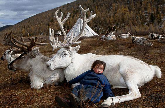 someday I will go to Mongolia