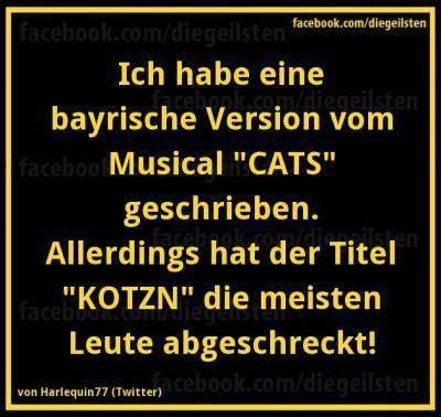 Nicht jeder versteht Bayrisch! *LOL