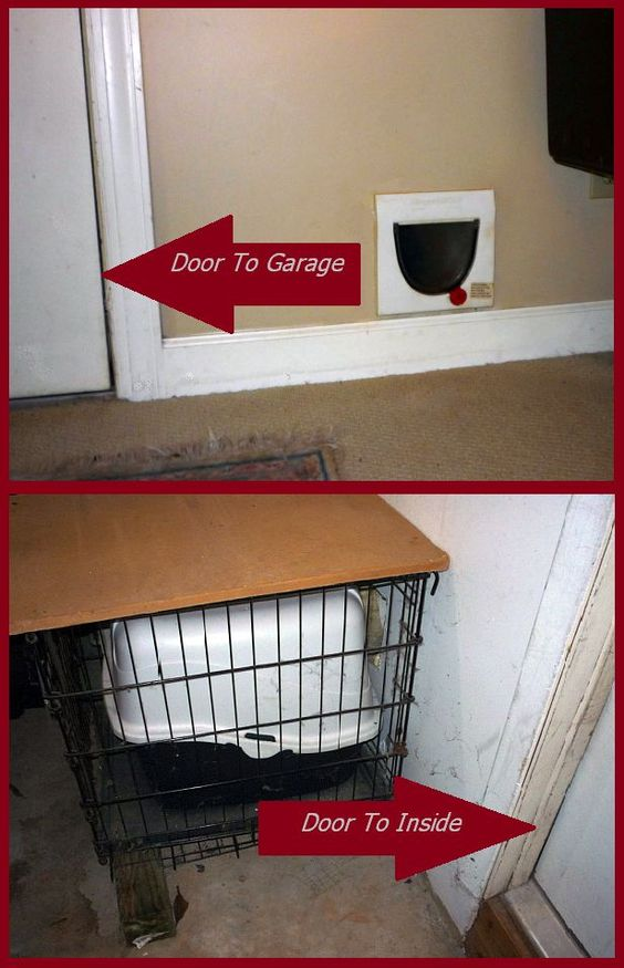 GARAGE LITTERBOX FOR INDOOR CATS: We did this when we moved in our home. Installed a cat flap door to the garage. Placed litter box in a thrift store dog cage (so kitty would not wander around a garage of chemicals and tools or run out when the garage door opened). She learned to use it immediately.