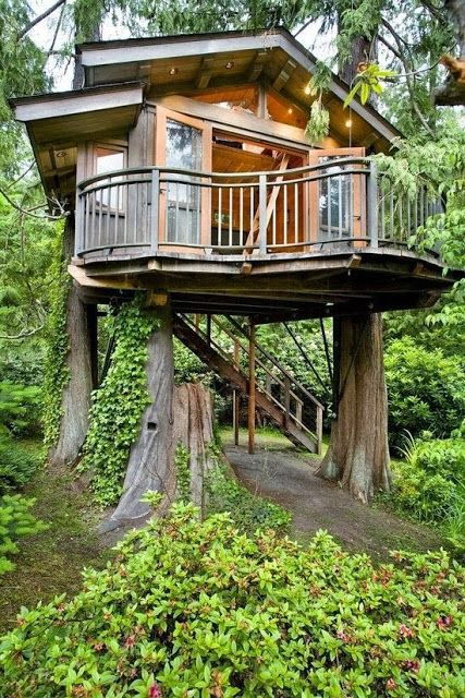 Cool Modern Tree House                                                                                                                                                                                 More