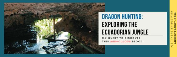 Experiencing the miraculous 'dragon's blood' in the Ecuadorian jungle (Pinterest)