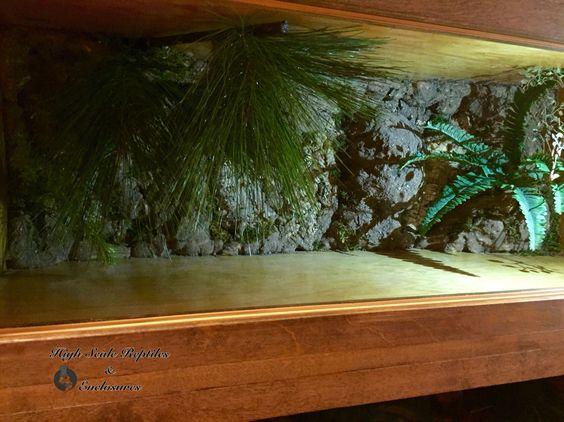 Custom reptile racks & enclosures. Www.facebook.com/highscalenclosures