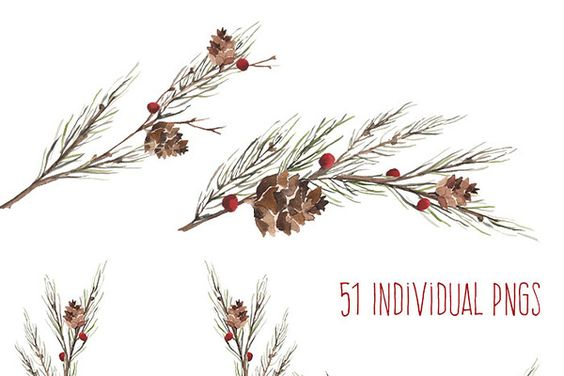 Winter Boughs Watercolor by Dot and Dash Creative on Creative Market