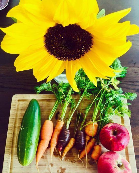 Freude An Der Ernte Ernte Gemuse Karotten Gurke Sonnenblume Gardening Der Ernte Gartendekoration Biogarten Garten Deko