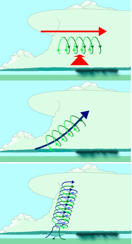 In a thunderstorm the warm air is raising so fast, it picks up that rotation and moves it so it's perpendicular to the ground. You can see the progression of this process in the image