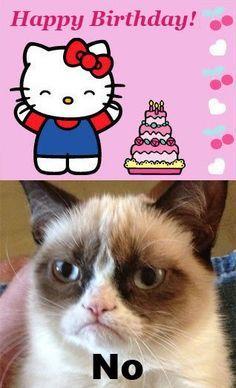 birthday meme cat - Google Search