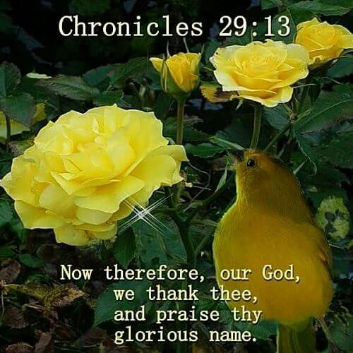 1 Chronicles 29:13 KJV