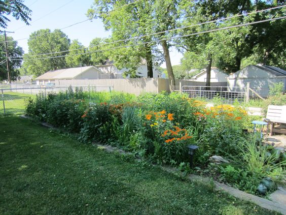 June 2012 prairie garden