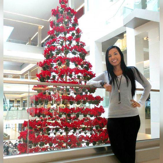 Disfrutando una hermosa Vista! Se acerca mi época favorita #panama #christmas #navidad