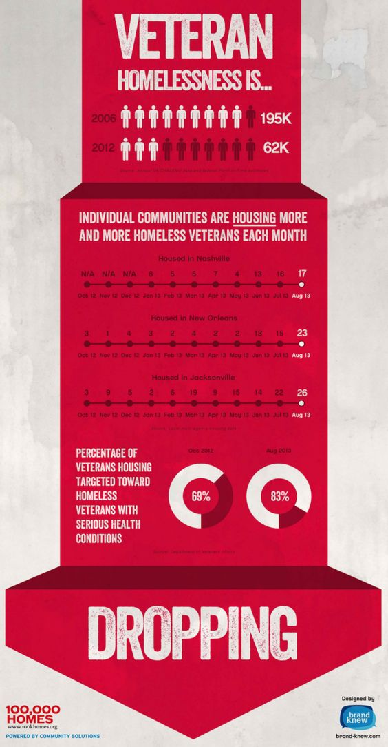 100 000 Homes Campaign Usa 20 000 Vulnerable And Chronically Homeless Veterans Housed Infographic