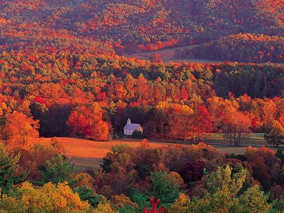 15 Best Places to See the Fall Colors in Gatlinburg and the Great Smoky Mountains National Park