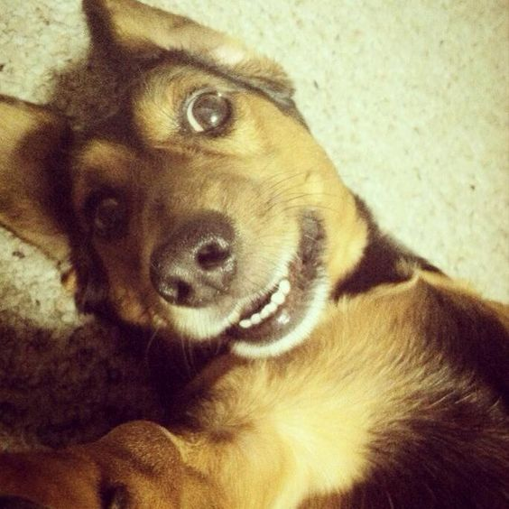 #SelfieSunday !