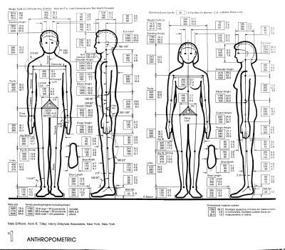 What does ergonomics & anthropometrics mean in product design?