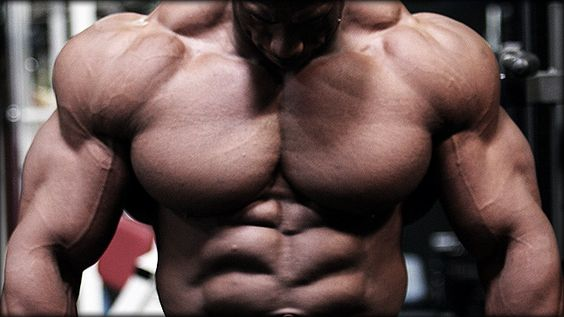 Gain Muscle Like a Novice Again, by Mark Rippetoe