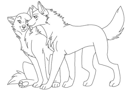 Cute Wolf Couple Drawing
