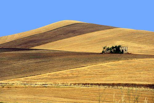 Strada del vino della Murgia Carsica | Svinando Magazine |