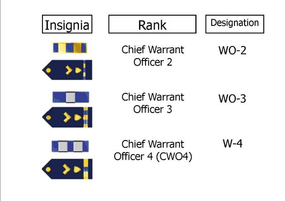 explore rank structure military rank and more explore related topics ...