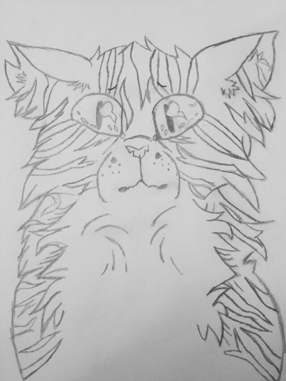 Here's the stripe outline and now I'm onto coloring and the black outlining I guess. Pretty nervous about how this is going to turn out the stripes are pretty crappy and I don't have the exact colors for the pelt and markings. ©A Opela.