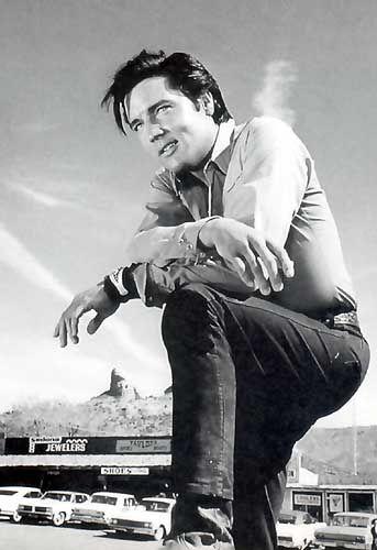 Elvis Presley ~ Stay Away, Joe - 1968