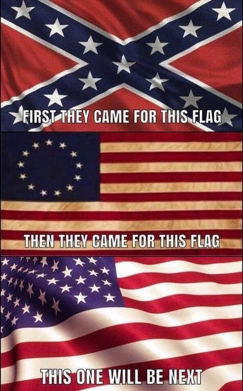 Alecat33 American Freedom First They Came Flag