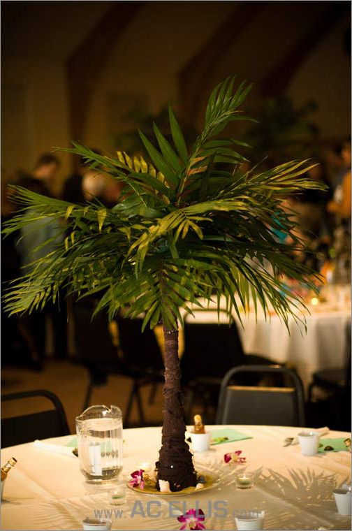 mini palm tree centerpiece - great for a beach themed wedding or party, and  you could DIY it! | Centerpieces | Pinterest | Mini palm tree, Tree  centerpieces ... - Mini Palm Tree Centerpiece - Great For A Beach Themed Wedding Or