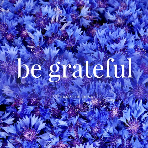 The Power of Gratitude http://howtobehappy.guru/category/gratitude/: