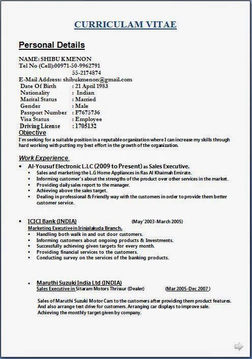 format of job resume Download Free Excellent CV   Resume - door to door sales sample resume
