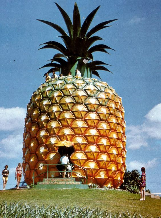 A Pineapple House In Australia Interesting Sites