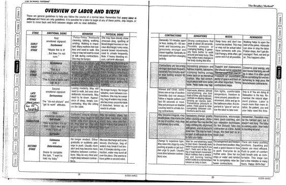 3 Phases of Labor | Labor & Delivery Chart- Bradley Method - September - December 2010 ...