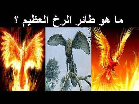العنقاء او طائر الرخ في علم الاساطير هل هو حقيقة ام اسطورة Mythology Myths Rook