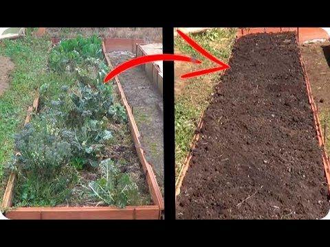 44++ Como preparar tierra organica ideas