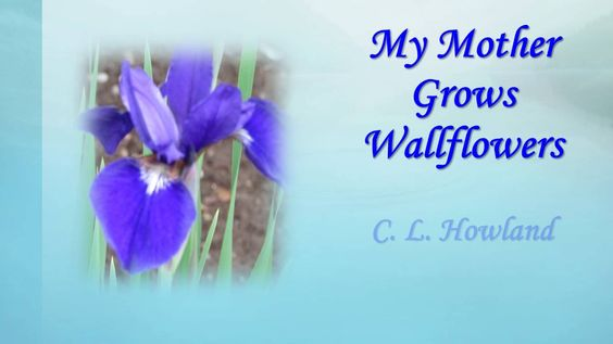 My Mother Grows Wallflowers